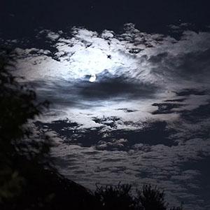 """Stars"" - Still from Midnight Mind by Mara Katria"